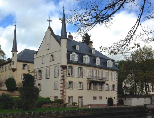 Escuni participa en Estrasburgo en un encuentro con representantes de la Asociación Comenius